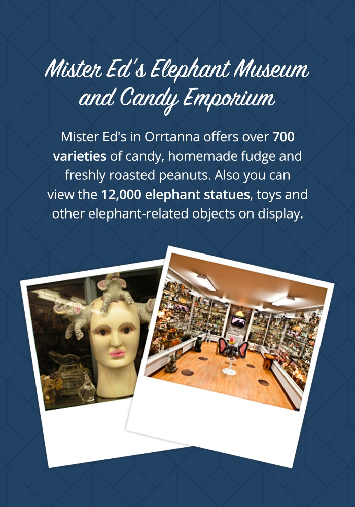Mister Ed's Elephant Museum and Candy Emporium
