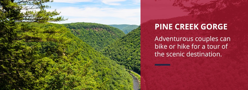 Pine Creek Gorge day trip