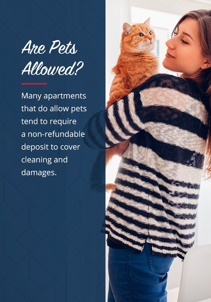 Find a pet friendly apartment